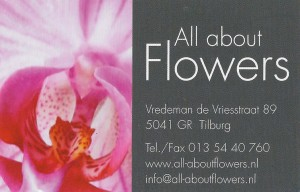 webadvert All about flowers